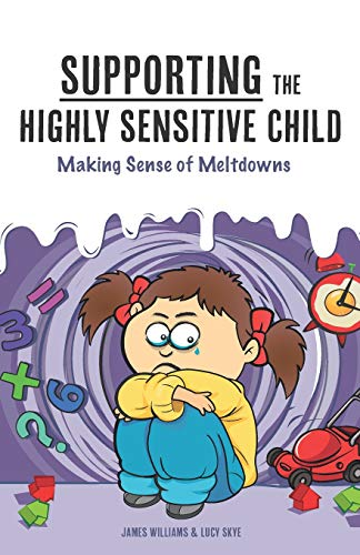 Supporting the Highly Sensitive Child: Making Sense of Meltdowns: Volume 2 (My Highly Sensitive Child) By Lucy Skye