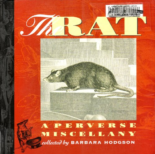 The Rat By Barbara Hodgson