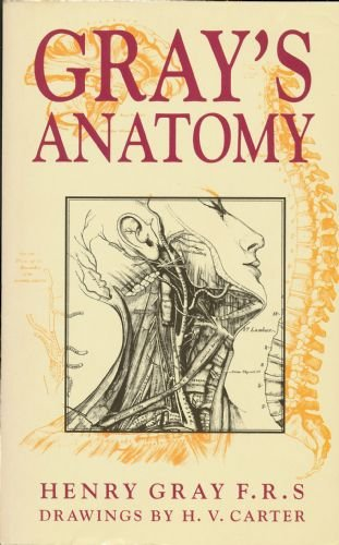 Gray's Anatomy by Gray, Henry Book The Cheap Fast Free Post