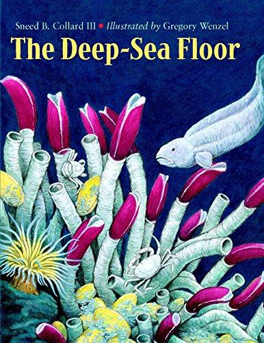 The Deep-Sea Floor By Sneed B. Collard, III