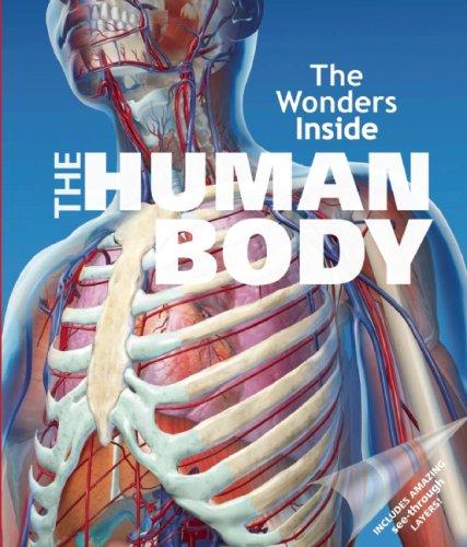 The Wonders Inside: The Human Body By Jan Stradling