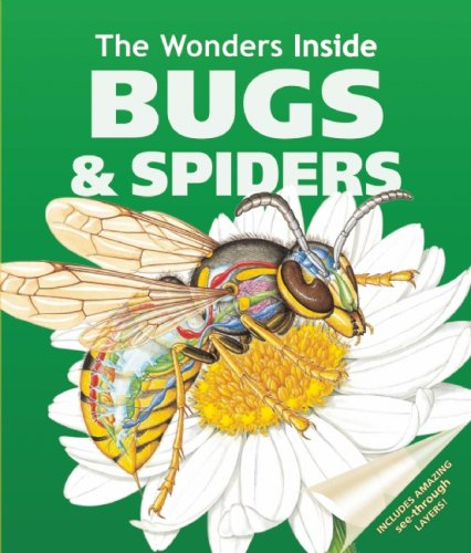 The Wonders Inside: Bugs and Spiders By Jan Stradling