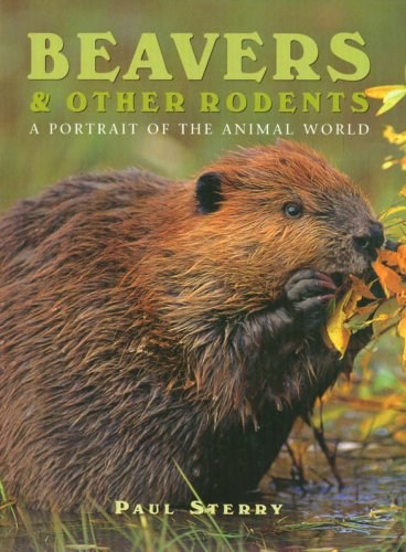 Beavers and Other Rodents By Paul Sterry