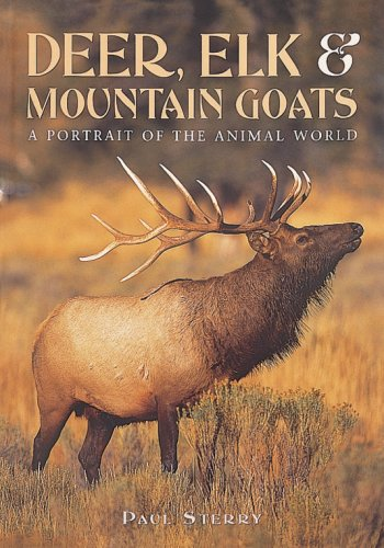 Deer, Elk and Mountain Goats By Paul Sterry