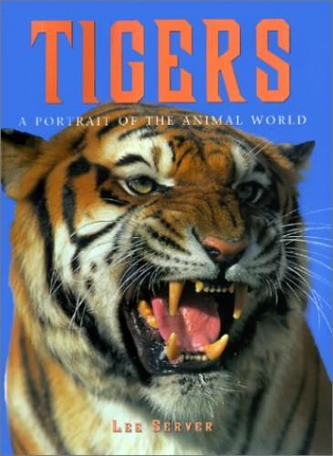 Tigers by Lee Server