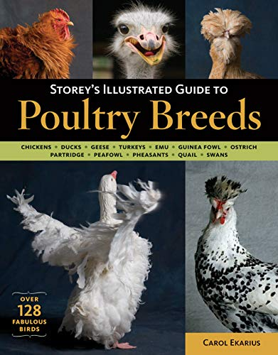 Storey's Illustrated Guide to Poultry Breeds By Carol Ekarius