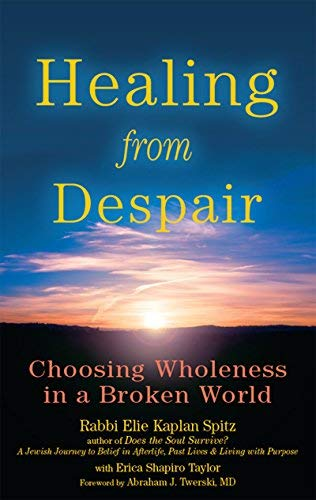 Healing from Despair By Rabbi Elie Kaplan Spitz with Erica Shapiro Taylor