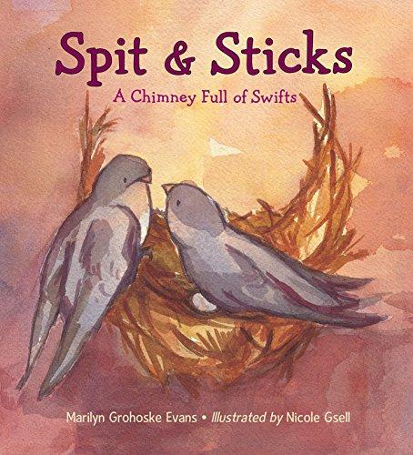 Spit & Sticks By Marilyn Grohoske Evans