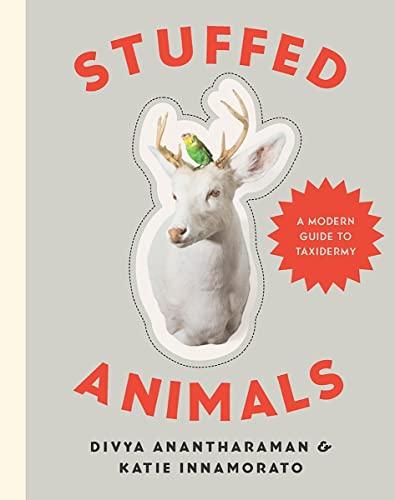 Stuffed Animals By Divya Anantharaman