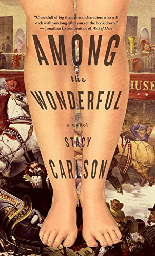 Among the Wonderful : A Novel By Stacy Carlson