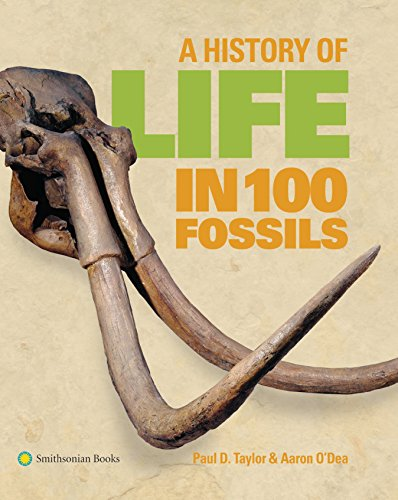 A History of Life in 100 Fossils By Dr Paul D Taylor (Natural History Museum London)