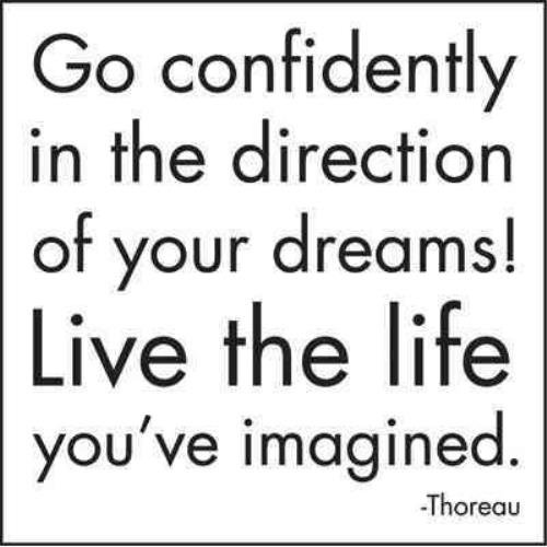 Go confidently In The Direction Of Your Dreams Journal By N/A