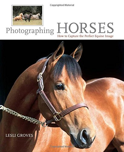 Photographing Horses: How to Capture the Perfect Equine Image By Lesli Groves