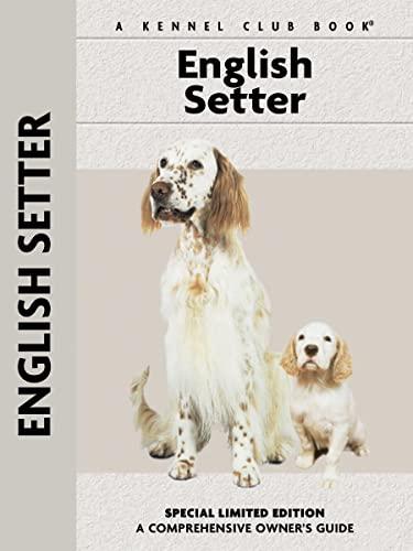 English Setter By Juliette Cunliffe