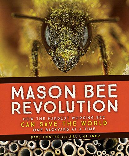Mason Bee Revolution By Dave Hunter