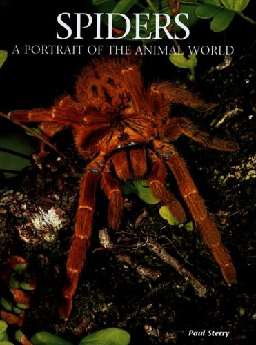 Spiders By Paul Sterry