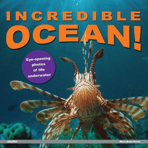 Incredible Ocean! By playBac Edu-Team