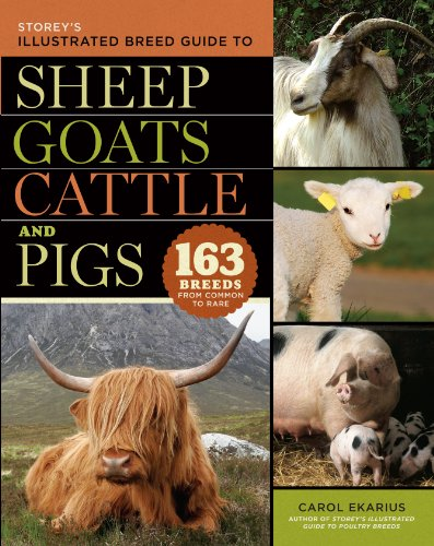 Storey's Illustrated Breed Guide to Sheep, Goats, Cattle and Pigs (Storeys Illustrated Breed Gde) By Carol Ekarius