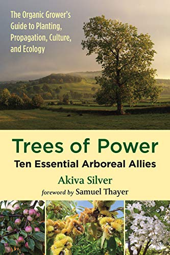 Trees of Power By Akiva Silver