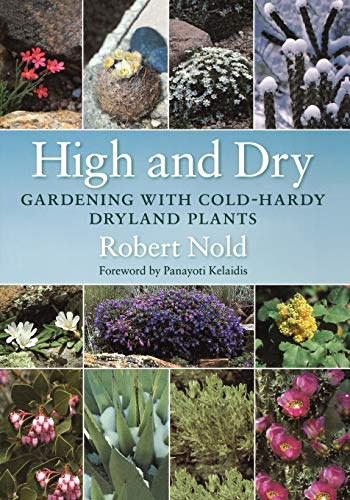 High and Dry By Robert Nold