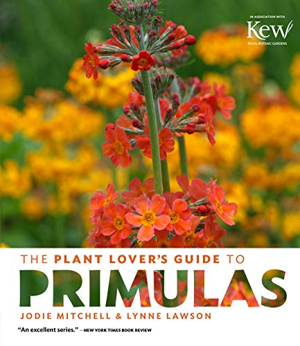 Plant Lover's Guide to Primulas By Jodie Mitchell