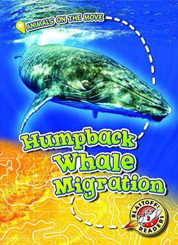 Humpback Whale Migration By Kari Schuetz