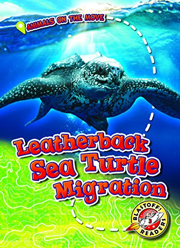 Leatherback Sea Turtle Migration By Kari Schuetz