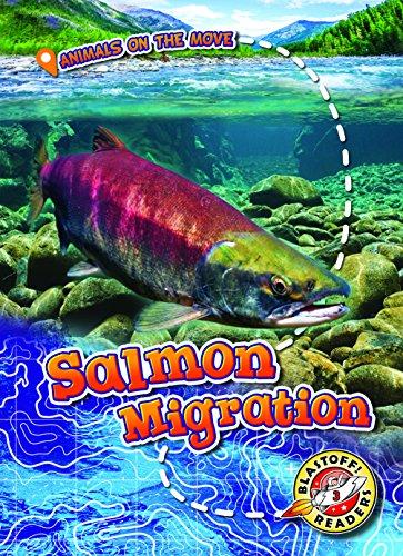 Salmon Migration By Kari Schuetz