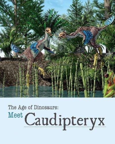 Meet Caudipteryx By Sheryn Knight