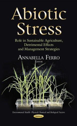 Abiotic Stress By Annabella Ferro