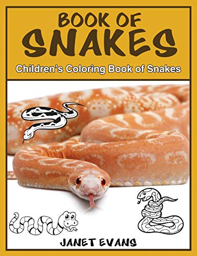 Book of Snakes By Janet Evans (University of Liverpool Hope UK)
