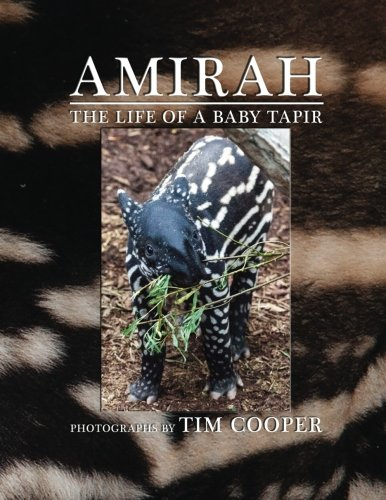 Amirah By Tim Cooper