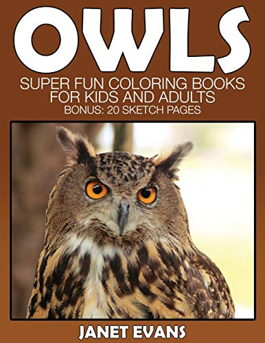 Owl By Janet Evans (University of Liverpool Hope UK)