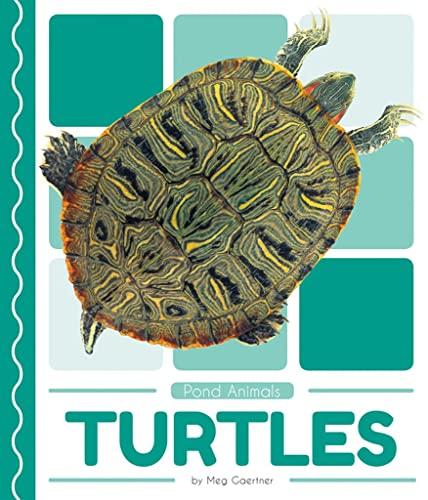 Pond Animals: Turtles By Meg Gaertner