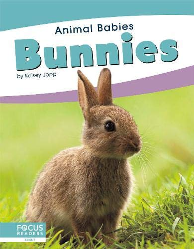 Animal Babies: Bunnies By ,Kelsey Jopp