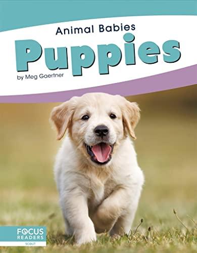 Animal Babies: Puppies By Meg Gaertner