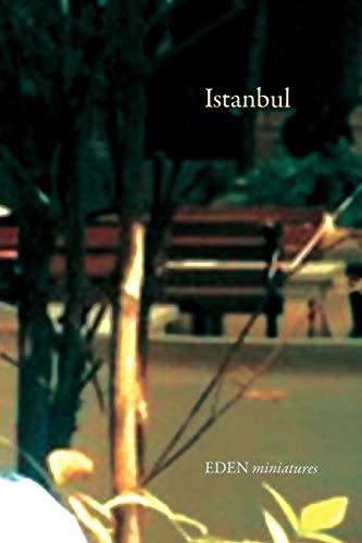Istanbul By Frei (Eth Zurich Tu Wien)