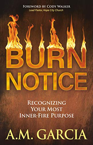 Burn Notice By A.M. Garcia