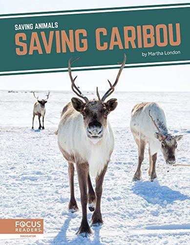 Saving Animals: Saving Caribou By Martha London