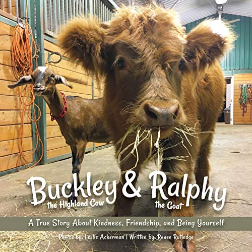 Buckley The Highland Cow And Ralphy The Goat By Leslie Ackerman