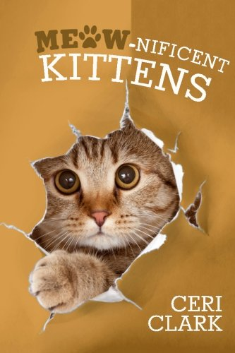 Meow-nificent Kittens: The Secret Personal Internet Address & Password Log Book for Kitten & Cat Lovers: Volume 1 (Disguised Password Book Series) By Ceri Clark