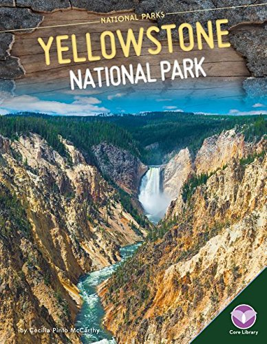 Yellowstone National Park By Cecilia Pinto McCarthy