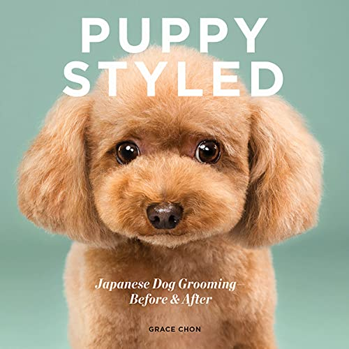 Puppy Styled By Grace Chon