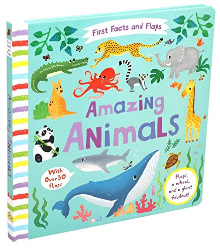 First Facts and Flaps: Amazing Animals By Editors of Silver Dolphin Books