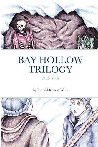 Bay Hollow Trilogy - Set 2 By Ronald Wing