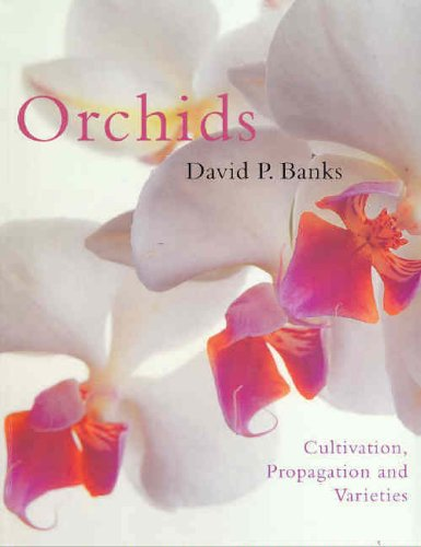 Orchids By David Banks