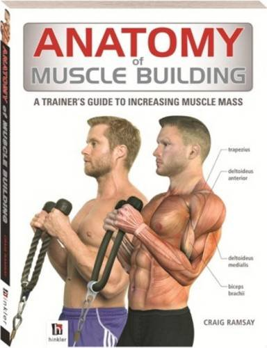 Anatomy of Muscle Building By Craig Ramsay