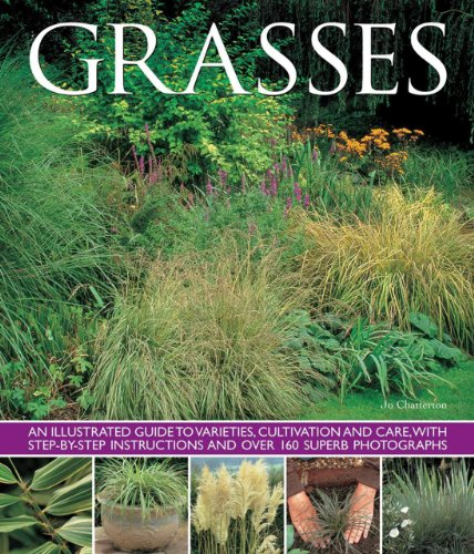Grasses By Chatterton Jo
