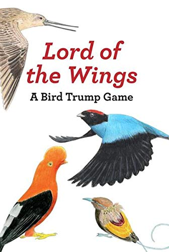 Lord of the Wings By Christine Berrie