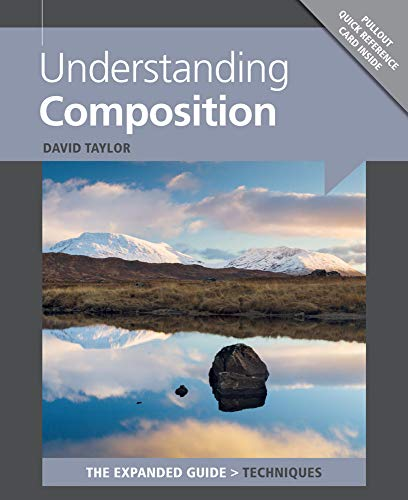 Understanding Composition (Expanded Guide. Techniques) By David Taylor